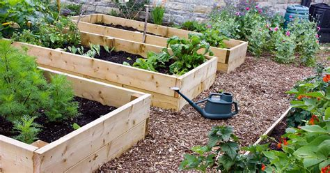 benefits of raised garden beds raised bed gardening benefits what do they actually do gp