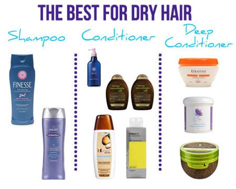 best leave in conditioner for dry frizzy hair best leave in conditioner for dry frizzy hair best leave
