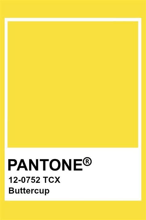 buttercup color pantone buttercup yellow lemon meadowlark vibrant