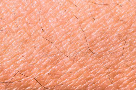 human skin texture stock photos royalty free human skin texture images depositphotos 174 human skin texture stock photos royalty free human skin texture images depositphotos 174