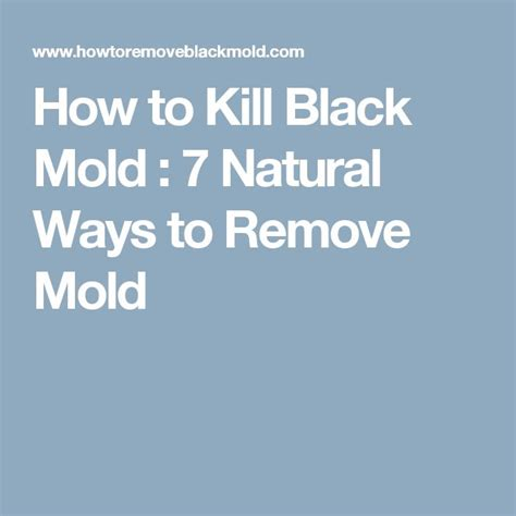 How Do You Detox From Mold by 1000 Ideas About Remove Mold On Remove Mold