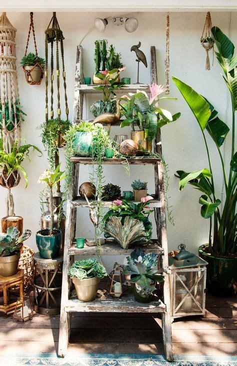 best bedroom plants best 25 bedroom plants ideas on pinterest bedroom