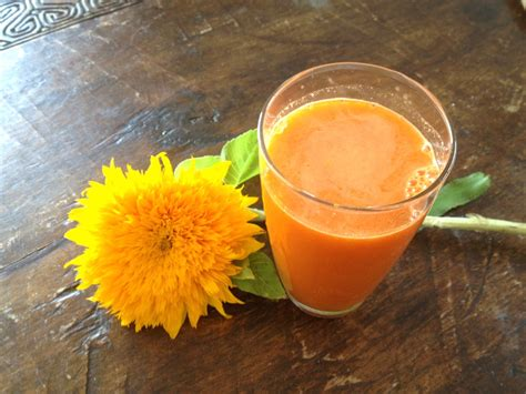 Juice Detox Retreats Australia by Juice Therapy Weight Loss Byron Bay Detox Retreats
