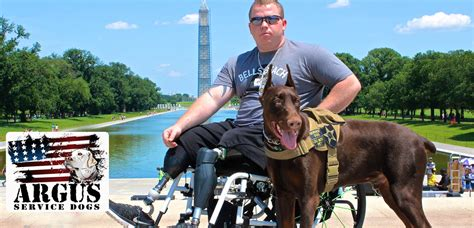 service dogs california argus service foundation serving disabled veterans
