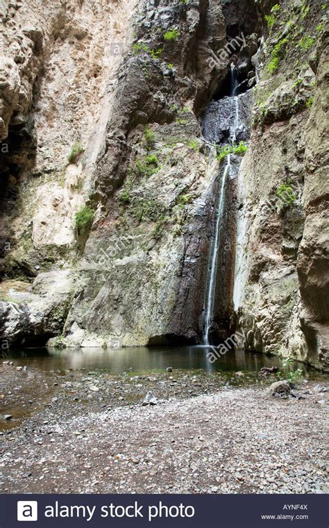 rhinelander canaries stock photo royalty waterfall in barranco del infierno gorge of hell adeje