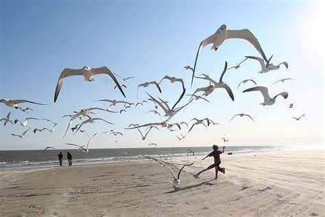 imagenes originales verano 21 fotos de playa originales para inspirarte