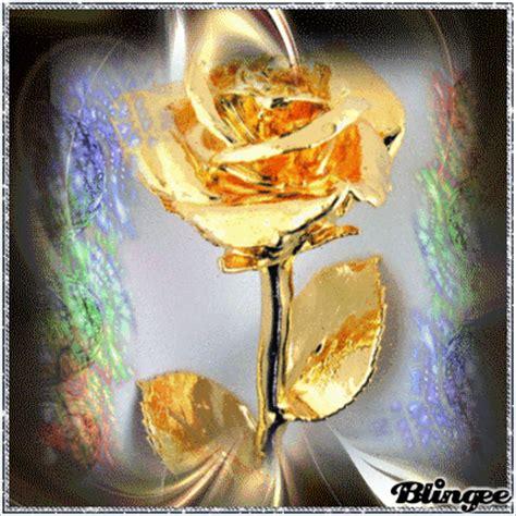 imagenes de rosas doradas hermosa rosa dorada fotograf 237 a 126620430 blingee com