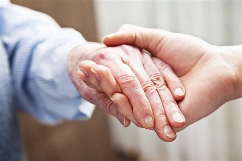 home care services sutton in home senior care