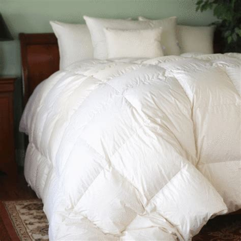 800 fill down comforter hungarian white goose down comforter 800 fill power