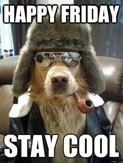 Stay Cool Meme - happy friday stay cool pictures photos and images for