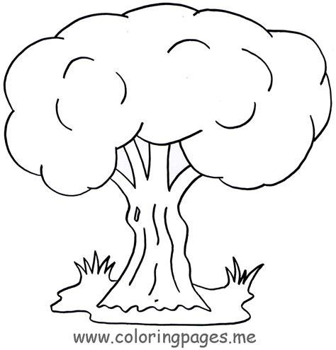 66 Dessins De Coloriage Arbre 224 Imprimer Sur Laguerche Com Coloriage Darbre