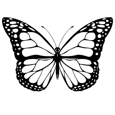 Coloring Pages Of Butterflies by Butterfly Coloring Sheets Printables Free Printable