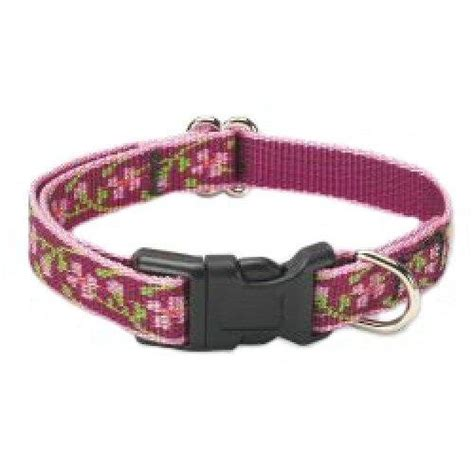 lupine collars lupine cherry blossom 1 2 in small adjustable collar 10in 16in my pet supplies