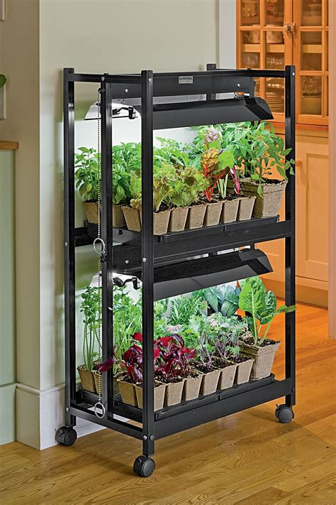 indoor vegetable gardening on indoor gardening