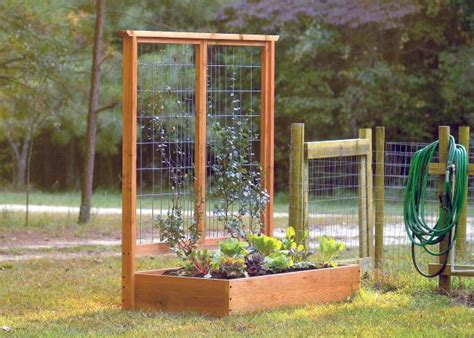 build  raised bed  trellis hgtv