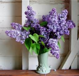 How To Put Roses In Vase Lilacs That Last Part 1 Bouquets Plants Coming In Part