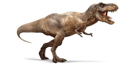 tyrannosaurus rex eating first ever meat eating dinosaur discovered in wales is a