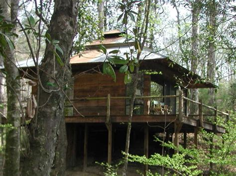 Cabins In Natchez Ms by Forest Retreat Secluded Getaway By Homochitto Forest