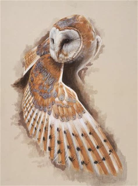 painting called quot barn owl wing down quot sweet drawings art