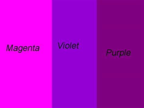 the color purple similarities between book and violet and purple are totally different dope