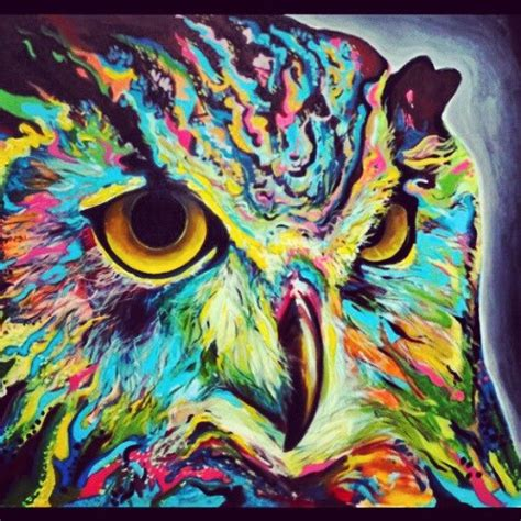 colorful animals best 25 colorful animals ideas on beautiful