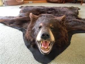 Polar Bear Rugs For Sale Bear Skin Rug Private Sale For Jason
