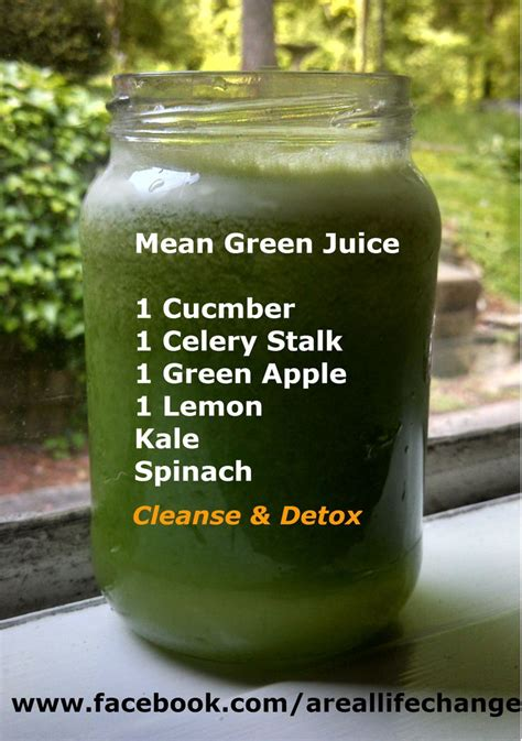 Green Juice Recipes For Detox And Rejuvenation by Best 25 Green Juice Cleanse Ideas On