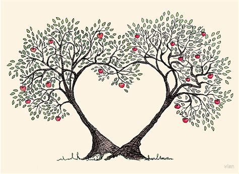 images of love tree quot love trees quot by vian redbubble