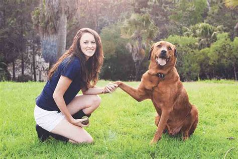 how to communicate with dogs dogsbreedscenter best breeds pictures information and reviews