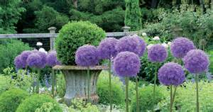 How To Create A Topiary - learn how to create a garden how to design a garden with topiaries