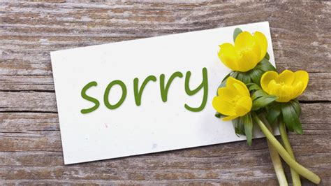 Apology Letter To Inlaws when an apology isn t enough grandparents