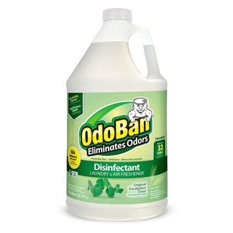 Kitchen Ceiling Lighting Ideas by Odoban 1 Gal Eucalyptus Odor Eliminator And Disinfectant