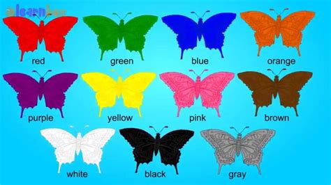 butterfly colors butterfly colors song learning color butterfly for