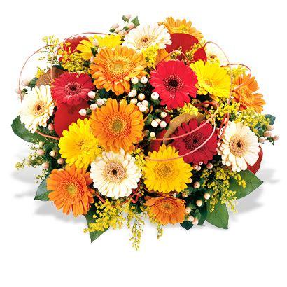 Dankeschön Bilder Geburtstag 3802 by Sagen Sie Danke Mit Blumen Aus Dem Blumenversand