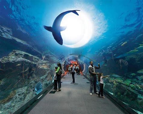imagenes de las casas mas impresionantes del mundo bienvenido a los mundos del agua los acuarios m 225 s
