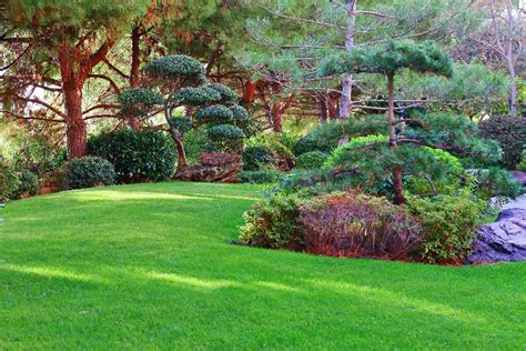 giardino giapponese il giardino giapponese monte carlo montecarlo