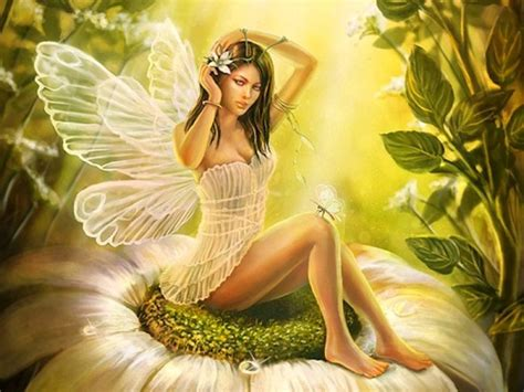beautiful fairies beautiful fairy angel wallpaper beautiful desktop hd