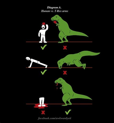 T Rex Arms Meme - t rex arms vs human arms i dinoes too pinterest