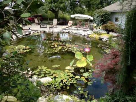 beautiful backyard ponds beautiful backyard pond youtube