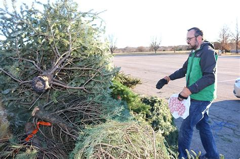 shawnee mission park christmas in the park jcprd to recycle trees at shawnee mission park shawnee dispatch