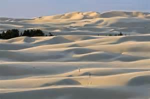 oregon sand dunes null dentrecords flickr
