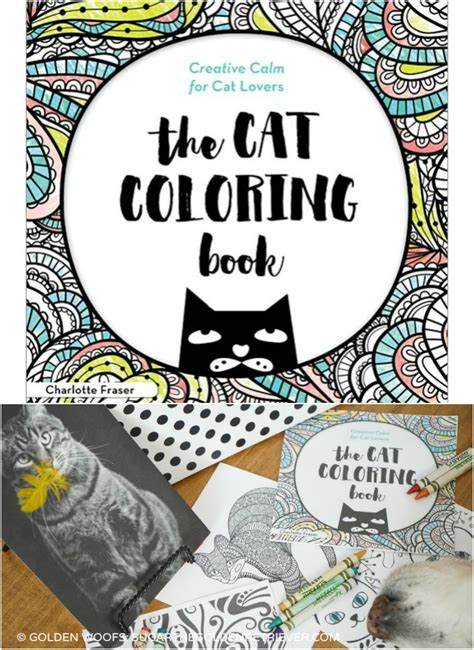 Book Giveaways And Contests - join the cat coloring book contest and giveaway icoloredacat