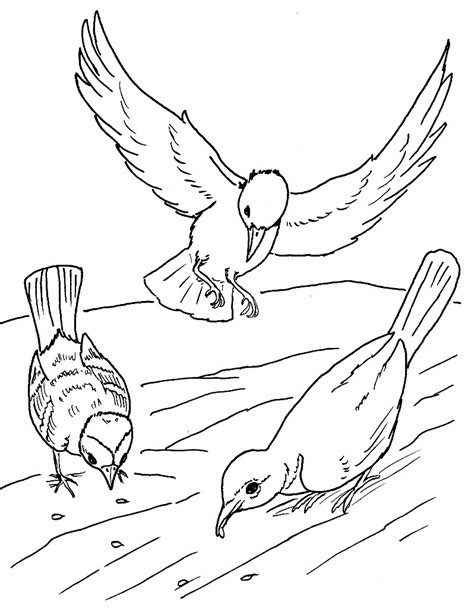 coloring pages jesus parables the parable of sower coloring page coloring pages