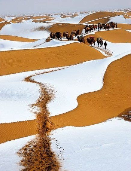 snow in sahara desert winter snow sahara desert 161 que sitios pinterest