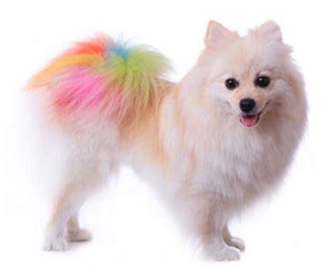 why are dogs color blind are dogs color blind