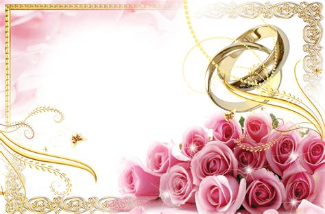 Wedding Border Transparent by Transparent Wedding Frame With Rings And Pink Roses
