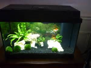 exemple d 233 coration aquarium poisson japonais