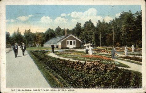 Garden Springfield Ma by Flower Garden Forest Park Springfield Ma