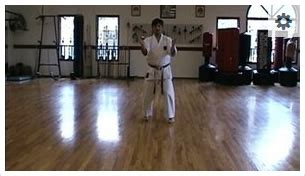 goju ryu kata videos   family karate center