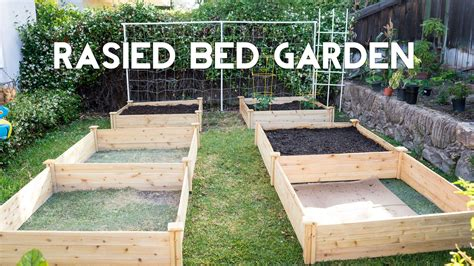 raised bed gardening how to start a vegetable garden
